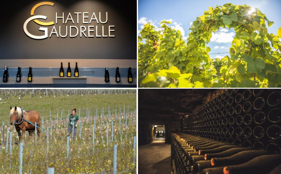 Chateau Gaudrelle images